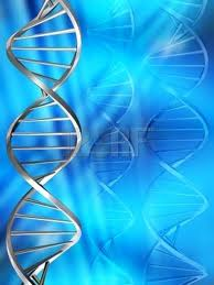 Noms hébreux des couches de l'ADN dans DOUZE COUCHES DE L'ADN images-9