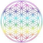 Thot, les géométries et la Fleur de Vie dans CERCLE DE GRACE fleur-de-vie