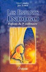 les Enfants Indigos et leur Origine dans ENFANTS INDIGO 41efm98xnal._