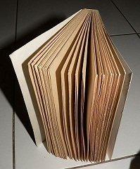un livre peut nous initier dans ALCHIMIE DE L'ESPRIT HUMAIN livre1