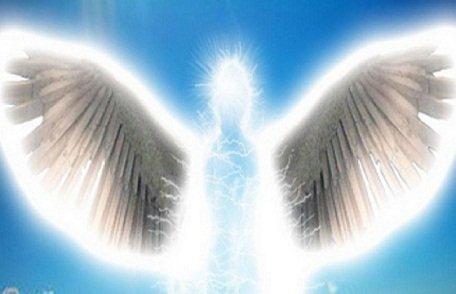 vie d'anges