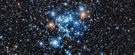 semence d'étoiles