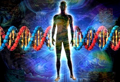 ADN kryeon