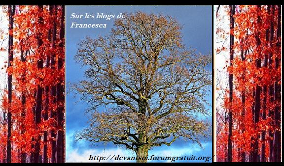 chez 1blog francesca