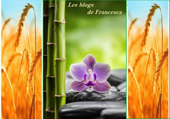 1les blogs francesca